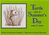 turtlecover_xsm